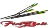 Firebolt Carbon arrows 20